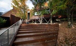 Le Pavillon des arbres - La réception BALNEA